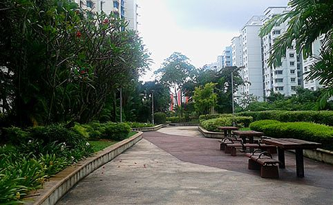 Rooftop Garden above 180 Edgefield Plains HDB Car Park, Punggol. Photo by Gwen Pew.