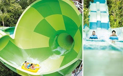 Adventure Cove Waterpark. Image courtesy of Resorts World Sentosa.
